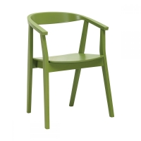 Greta Green (Грета Грин) стул деревянный зелёный
